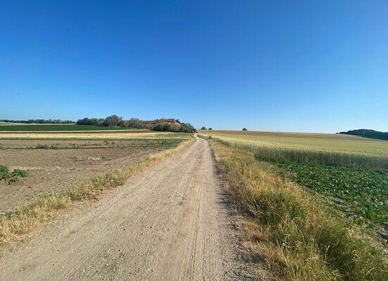 Feldweg und wolkenloser blauer Himmel