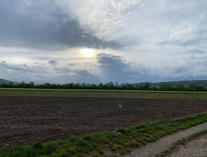 Feld und bewölkter Himmel, bei dem man ein bisschen die Sonne sieht